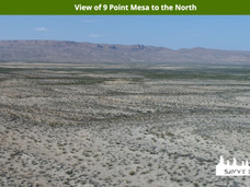 View of 9 Point Mesa to the North.jpeg