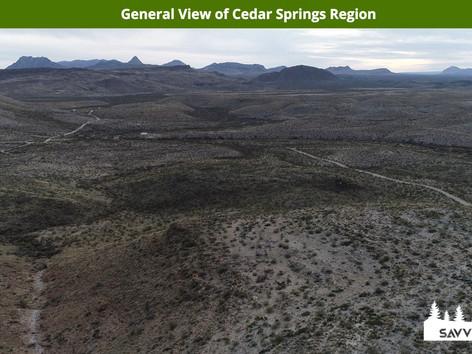 General View of Cedar Springs Region.jpe