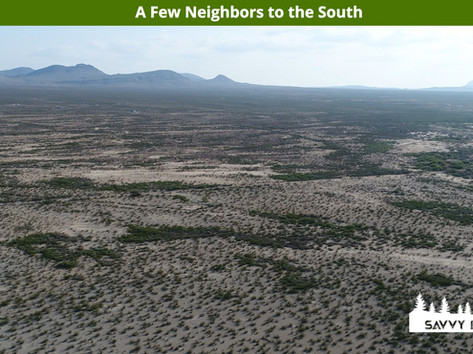 A Few Neighbors to the South.jpeg