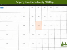 Property Location on County CAD Map.jpeg