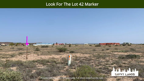 Look For The Lot 42 Marker.png