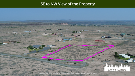 SE to NW View of the Property.png