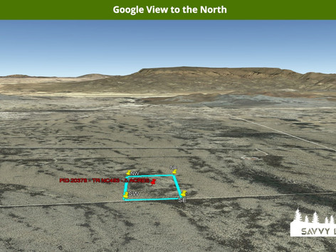 Google View to the North.jpeg