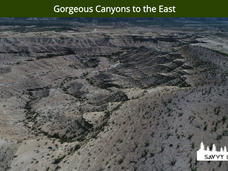 Gorgeous Canyons to the East.png