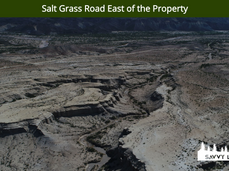 Salt Grass Road East of the Property.png