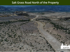 Salt Grass Road North of the Property.pn