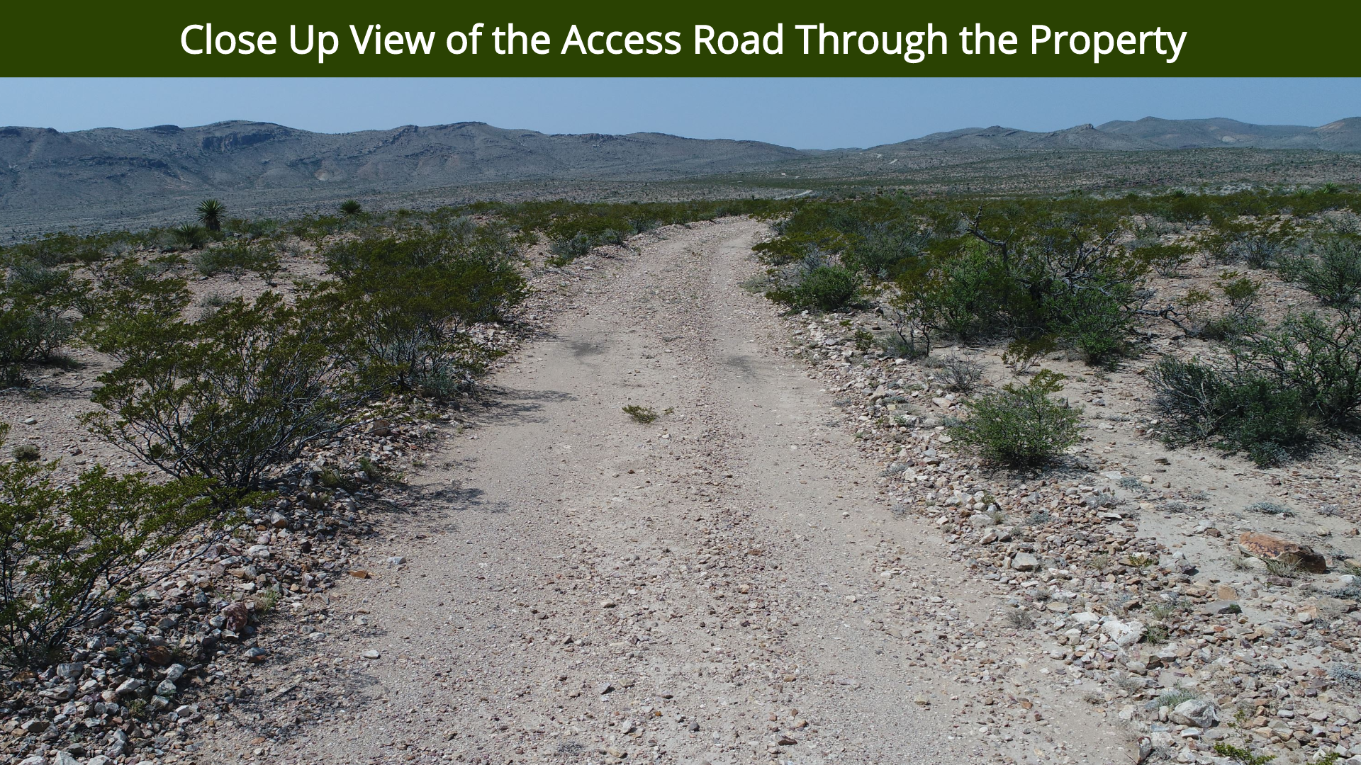 Close Up View of the Access Road Through