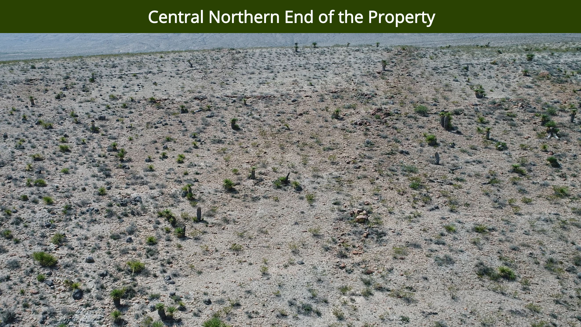 Central Northern End of the Property