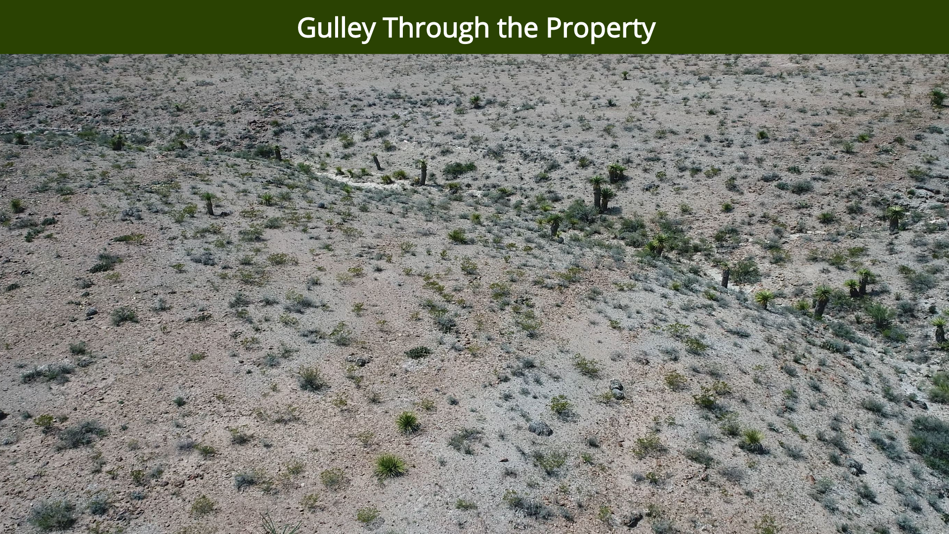 Gulley Through the Property