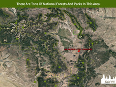 There Are Tons Of National Forests And P