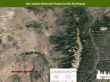 San Isabel National Forest to the Northe
