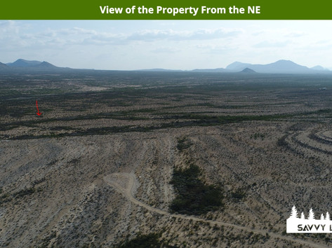 View of the Property From the NE.jpeg