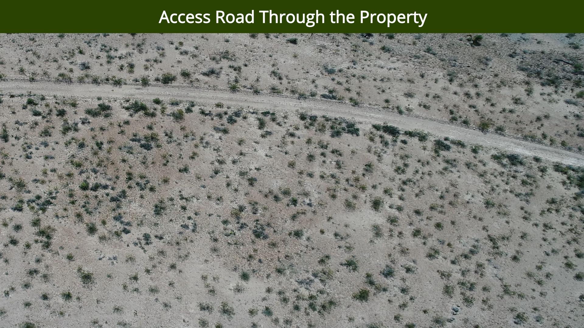 Access Road Through the Property