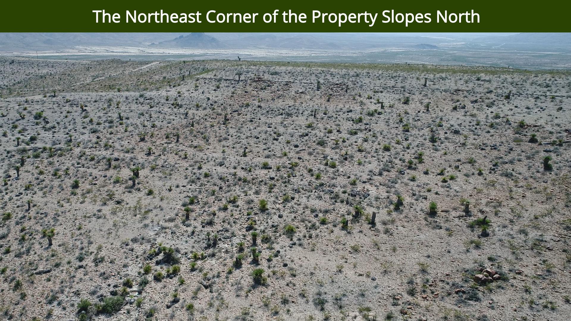 The Northeast Corner of the Property Slo