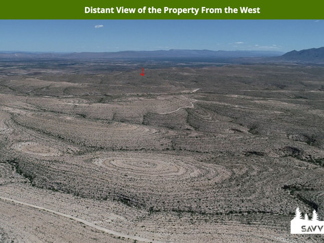 Distant View of the Property From the We
