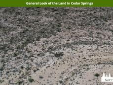 General Look of the Land in Cedar Spring