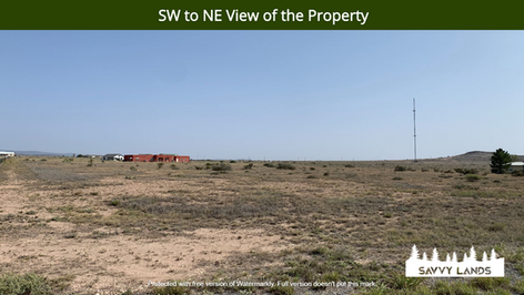 SW to NE View of the Property.png