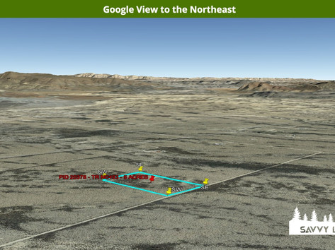 Google View to the Northeast.jpeg