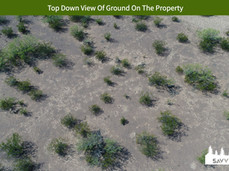 Top Down View Of Ground On The Property.