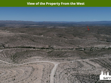 View of the Property From the West.jpeg