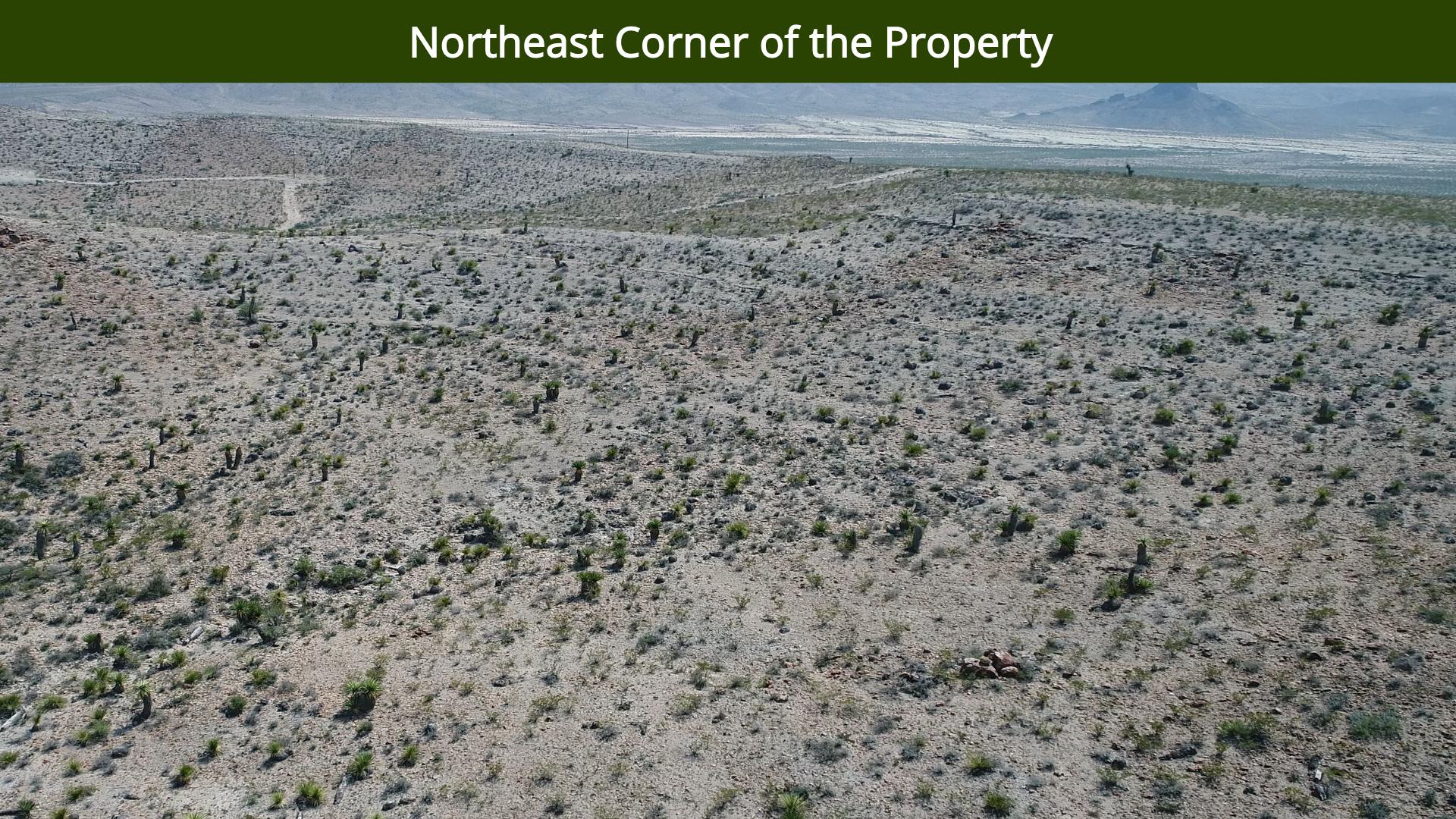 Northeast Corner of the Property