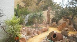 Desert Garden - Jardin Desierto