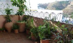 Terrace - Terraza