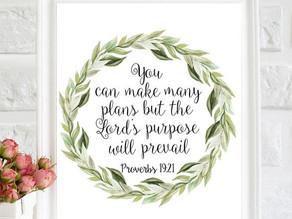 Week of January 12, 2020  Plans