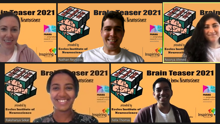 Clear Vision Research at Brain Teaser 2021