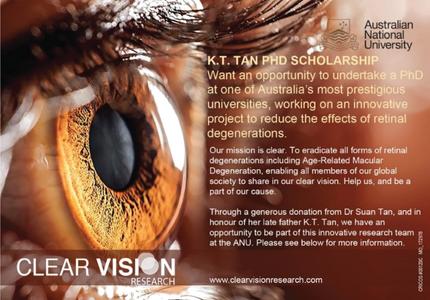 THE K.T. TAN PhD SCHOLARSHIP IN VISION SCIENCES