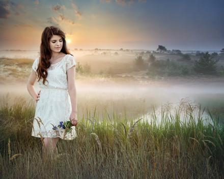 16x20 Foggy Meadow.jpg