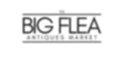 BIG FLEA (2).png