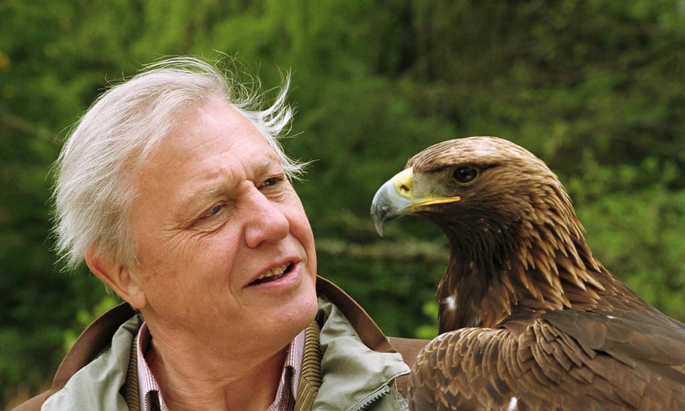 AWAY the survival series review PC Steam PS5 Nature Documentary Sir David Attenborough