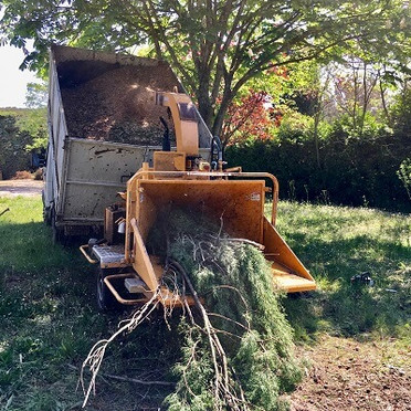Broyage de branches Vaucluse Gard Bouches-du-Rhone Var