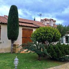 Taille diverses Vaucluse Gard Hérault Bouches-du-Rhone Var