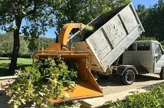 Wood Elagage - Abattage arbre - Marseille