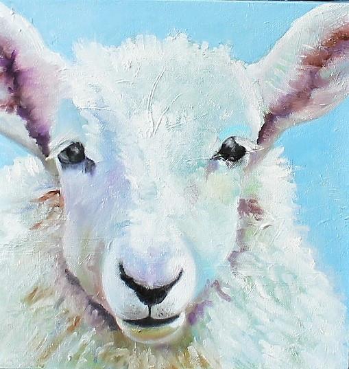 Lamb in the Wool