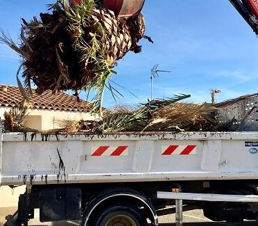 Broyage de branches VAR Bouches-du-Rhone Hérault