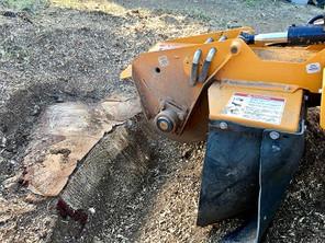 Wood Elagage propose un service de rognages de souches