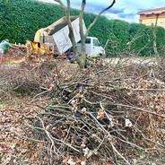 Broyage de branches VAR Bouches-du-Rhone