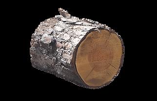 vente tronc bois par wood elagage