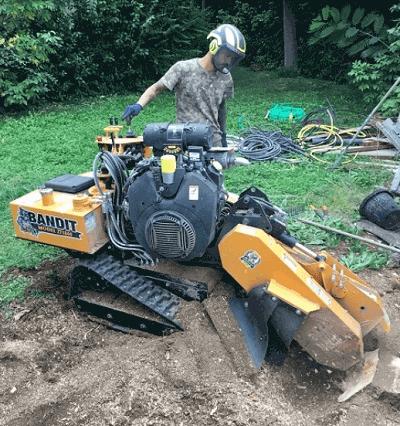 rognage de souche dessousage wood elagage