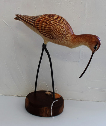 Curlew #2