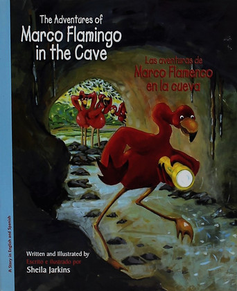 Marco Flamingo in the Cave (book)