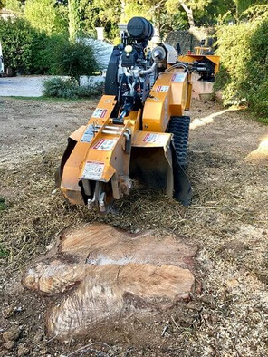 Rognage souches Marseille Wood Elagage