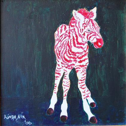 Red Zebra