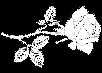 Rose_PNG.png