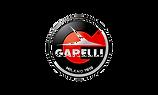Logo-Garelli_edited.png
