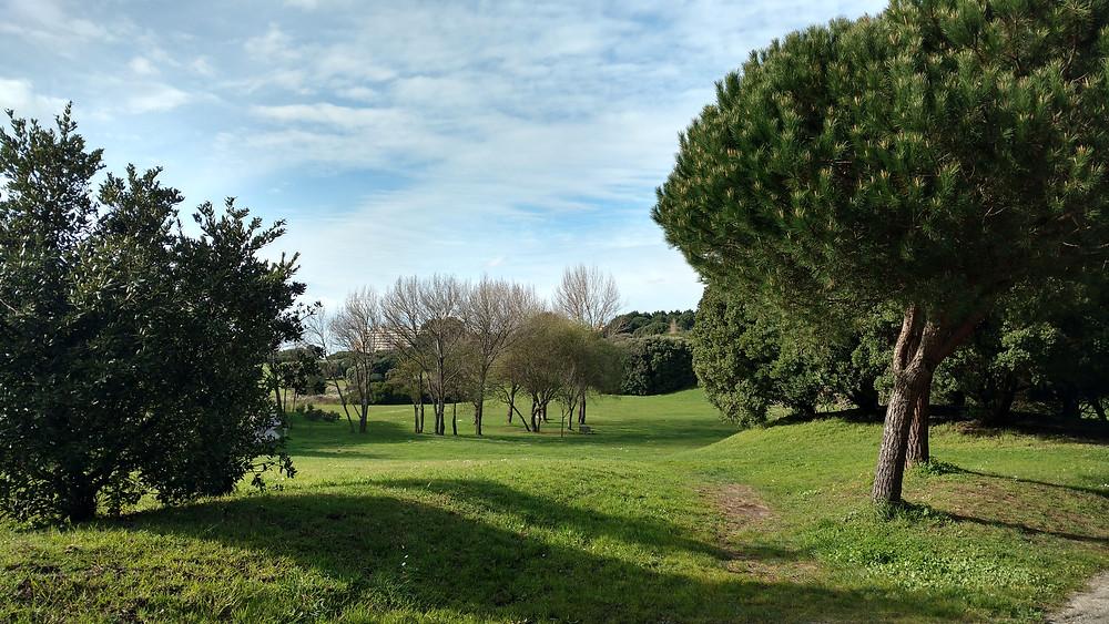 Parque da Cidade do Porto