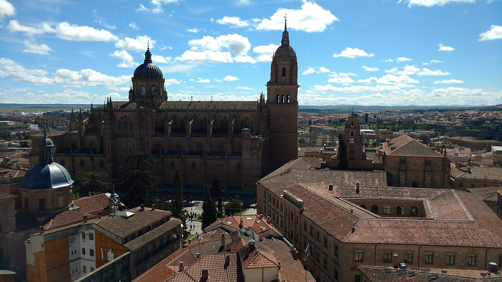 Vista da Torre dos Clerigos Salamanca